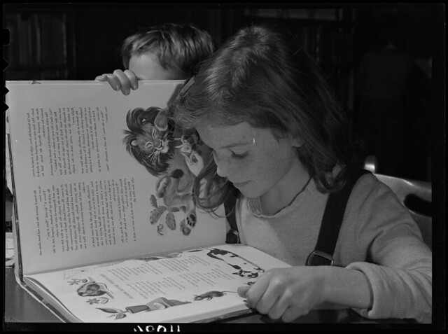 A young child reading / Un jeune enfant en train de lire