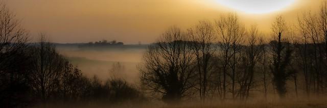 Petite brume d'un matin hivernal