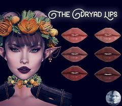 Voodoo - Makeup Vendor Dryad