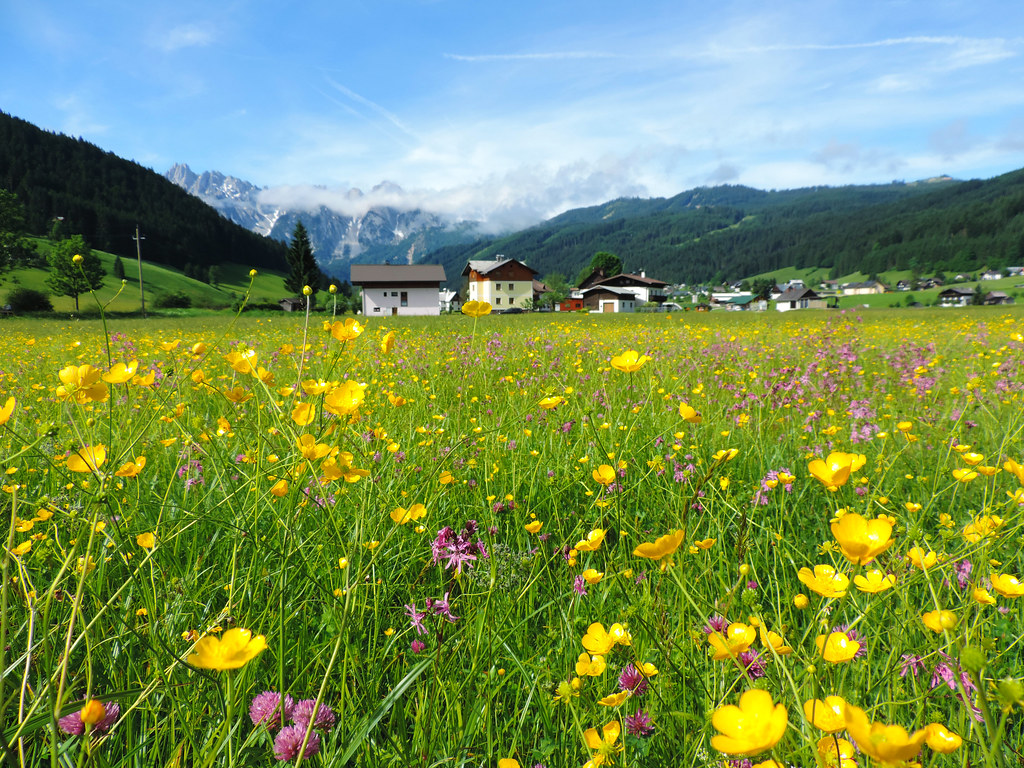 Best Late Spring Hikes In Central Europe: Gosau Valley, Austria