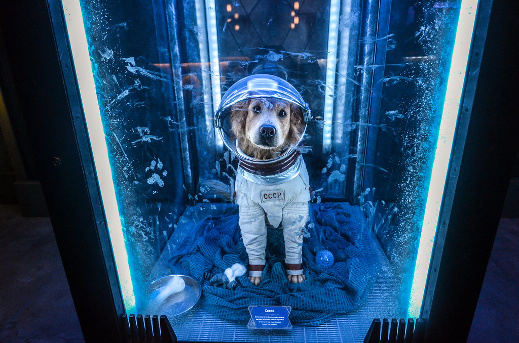 Astronaut dog Guardians Mission Breakout DCA