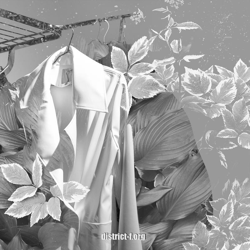 DISTRICT F - Минимализм - Простая жизнь - Как анализ гардероба помогает упростить жизнь
