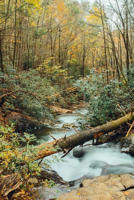 Dodd Creek