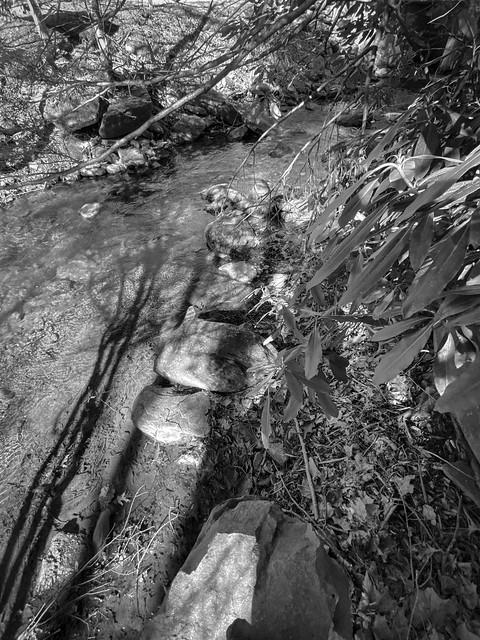 looking down, shallow mountain stream, elongated cast shadows, Montreat, NC, Nikon D3300, Asahi-Fish-Eye Takumar 17mm f-4, 2.3.20