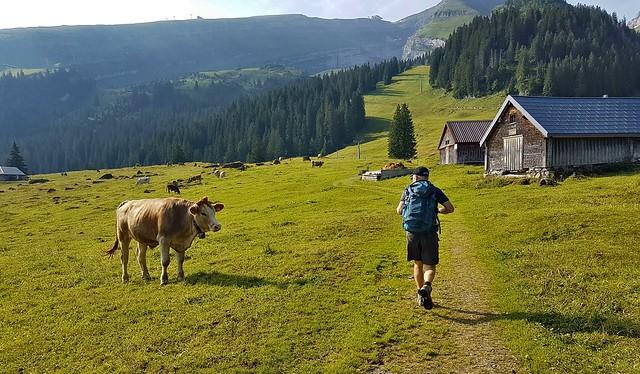 Alp Sellamatt (Toggenburg)