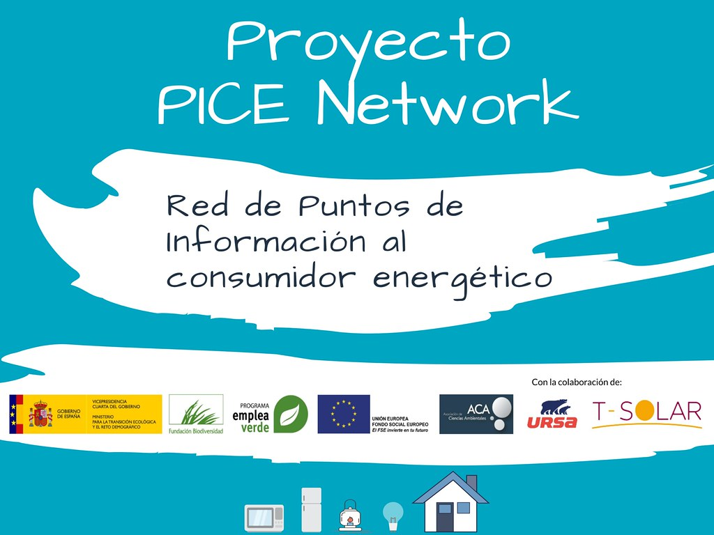 Proyecto PICE Network