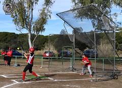 Partido amistoso de béisbol/Softbol .   @beisboltarragona - @beisbol_club_manresa_dracs ▫️ @fcbeisbolsoftbol  Más fotos : 💻 www.mcambphotos.com  Flikr/insta : mCamb_photos . 🔹🔹:small_blue_di