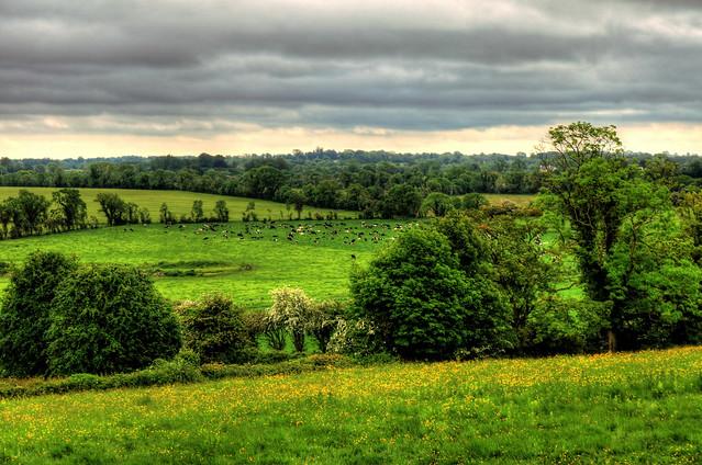 County Meath IR