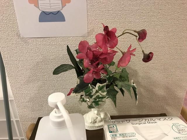 Yoshiko san @Nara,Jun2020