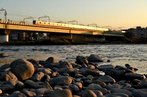 river riverbank tamagawa odakyu train nature cityscape landscape sunset goldenhour