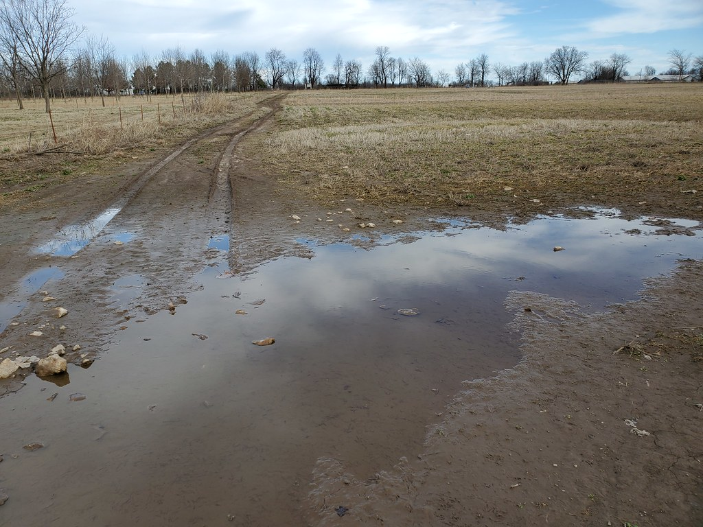 Standing water in pastures and ruts
