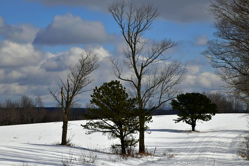 road country snow trees sky clouds scenic view calm