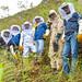 Coffee - Emprendimiento de abejas en APROCASSI
