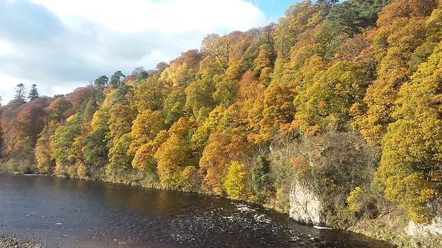 Autumn Colours, River Spey, Oct 2019