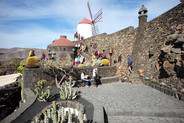 Lanzarote, Islas Canarias, Spain, January 2020 034