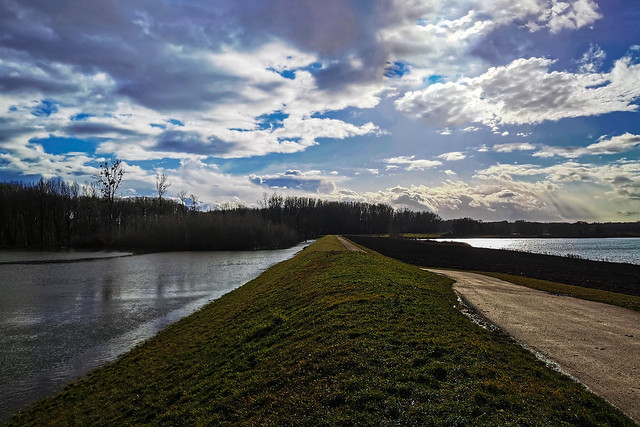 Rhine floodplains
