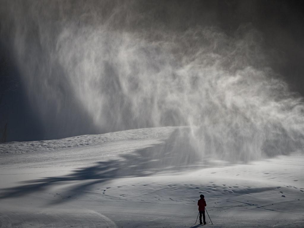 Blizzard, blizzard... Vous avez dit blizzard ? 49489182991_e4a9f75236_b