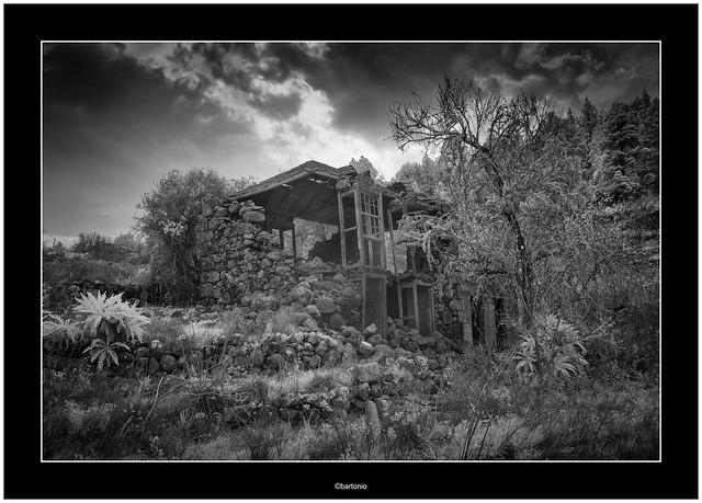 Abandoned in Puntagorda