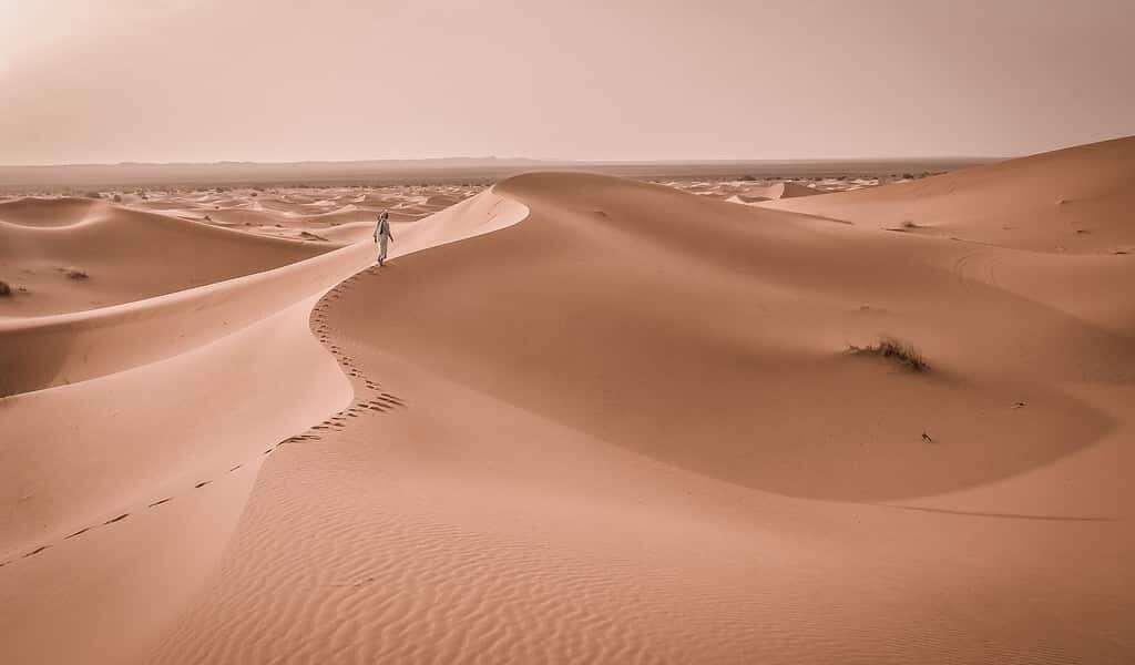 les-dunes-de-sable-peuvent-communiquer-entre-elles