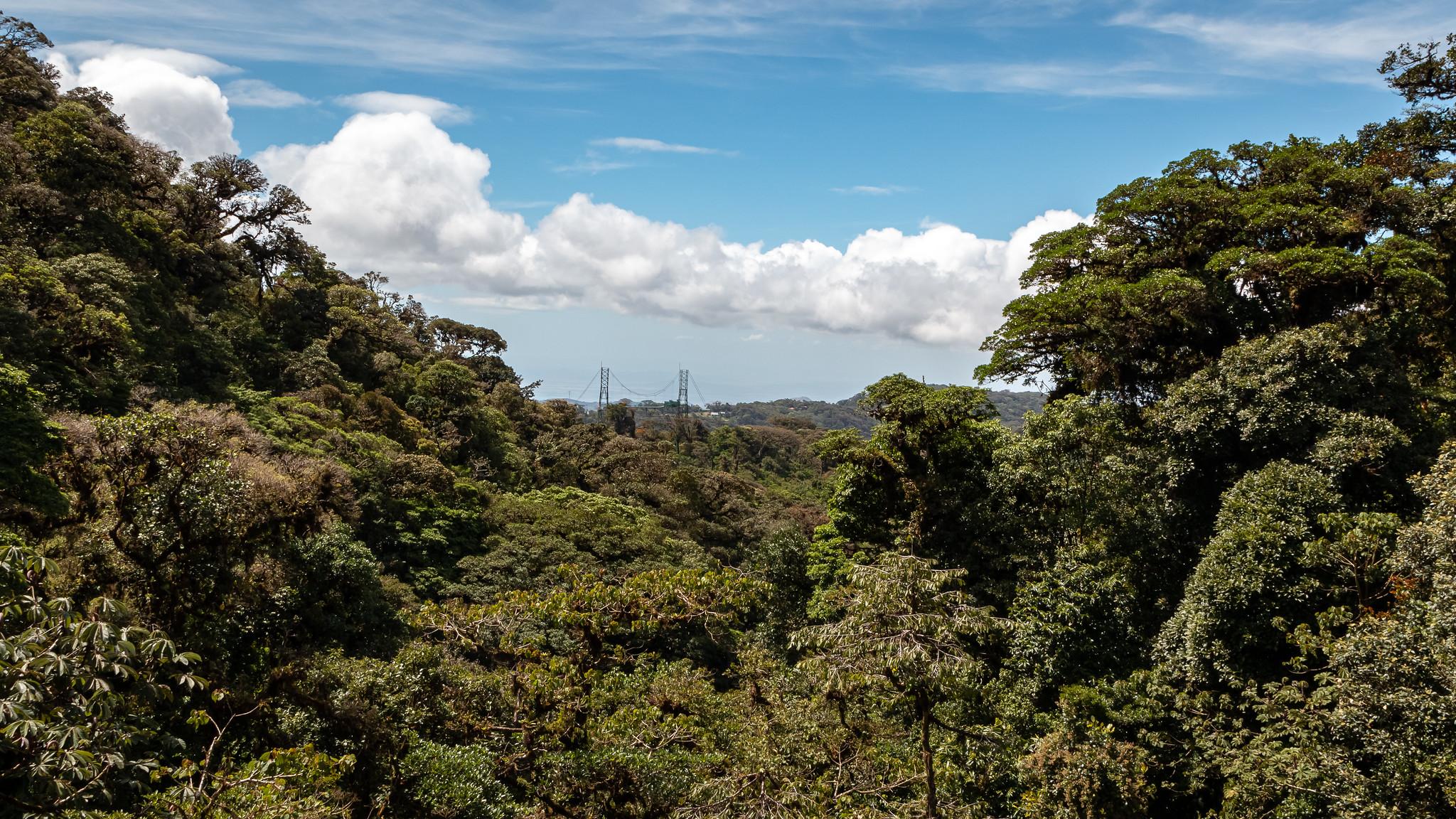 Monteverde - [Costa Rica]