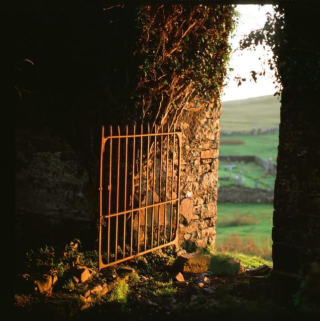 Carbury Castle gate