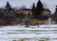 Winter - Morris Kerbel Park