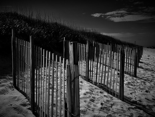 nikon blackwhite beach landscape sand fence sanddune nature