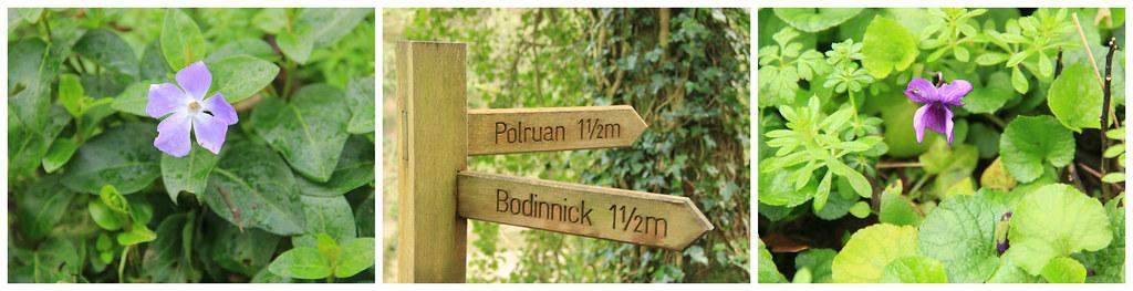 Hall Walk trail_ Polruan to Fowey