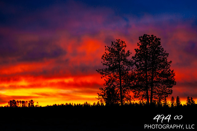 A Pacific Northwest Sweet Morning Crush: A Dramatic Sunrise (Part 138): Love's Majestic Calling (In Technicolor) - (Explored)