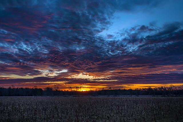 February Sunrise - 020420-080955