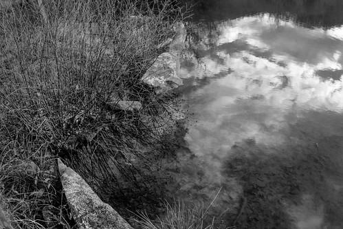 winterlandscape pond reflections stonewall montreat northcarolina nikond3300 asahifisheyetakumar17mmf4 primelens blackandwhite monochrome monochromatic
