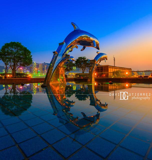 Dolphin Sunset (III) - Hong Kong