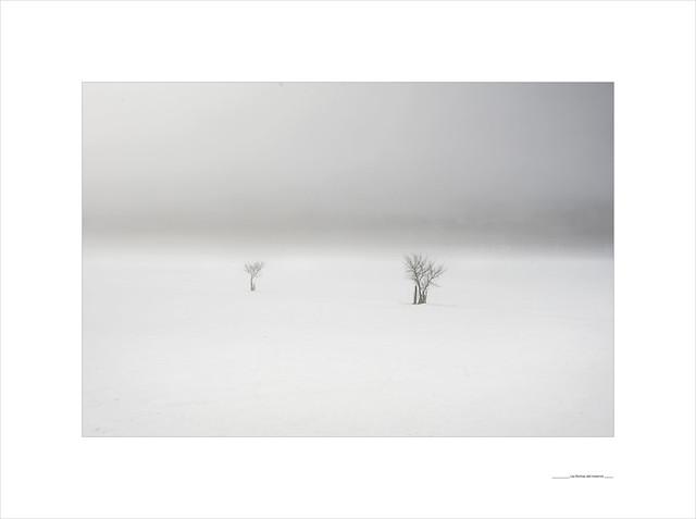 Las formas del invierno