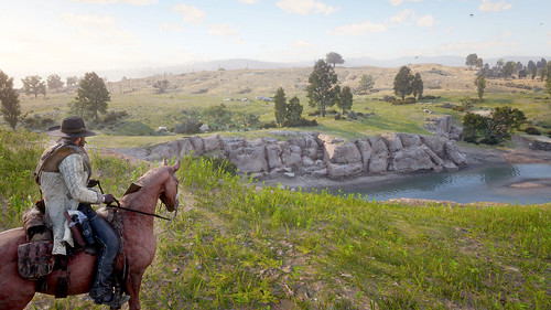 Red Dead Redemption 2 - West Elizabeth's Southern Grass Plains