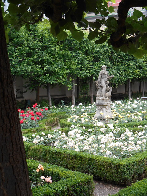 Rosen Garten (i)