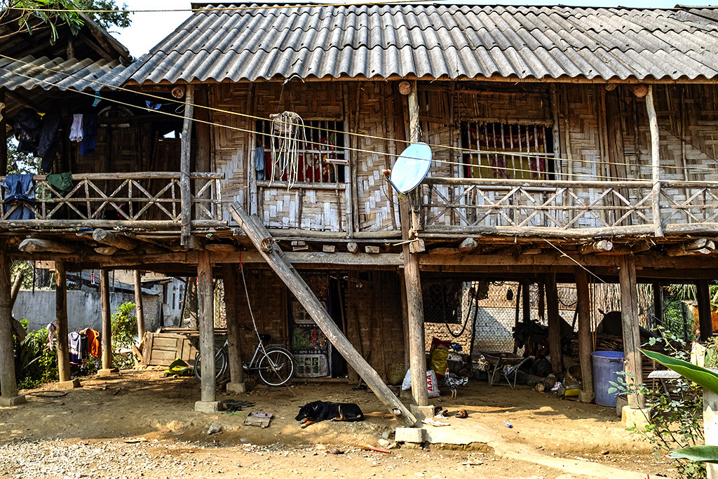 House with dog and chicken--Ban Banh