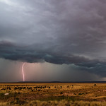 5. Veebruar 2020 - 14:35 - Sometimes marginal severe weather days produce great results. Upslope flow was responsible for this photogenic supercell and big  bolt on May 21st, 2018 just to the west of Fort Sumner, New Mexico. We were traveling north on US 84 heading to Santa Rosa, and this storm hit us good when we got into town.