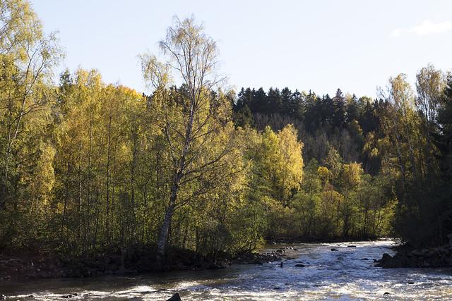 Ågårdselva 1.18. Solli, Norway