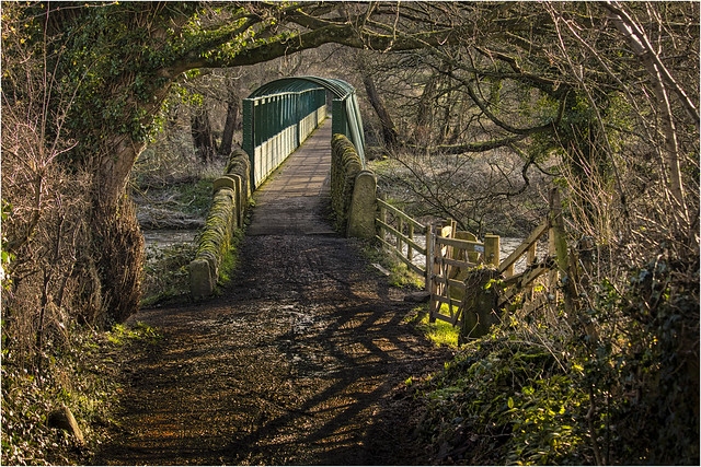 Denso Marston Nature Reserve 040220