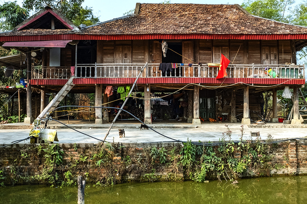 House with dogs, chickens and flag--Ban Banh