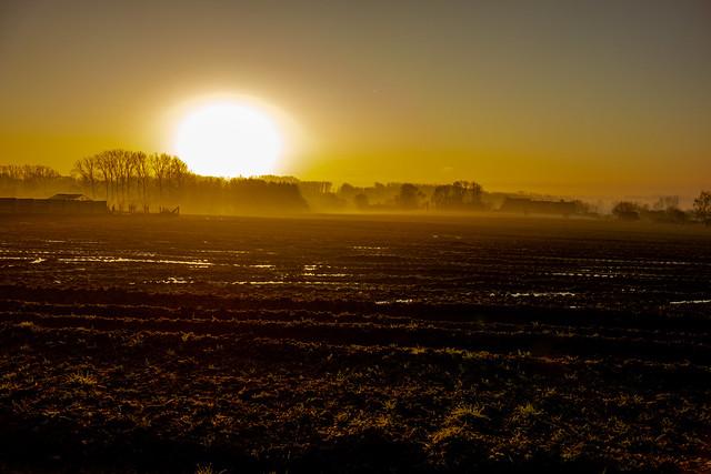 Misty dawn Kauwstraat-06723