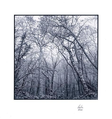 Winter Blues, Hürther Berg