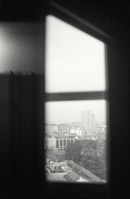 Window (film)