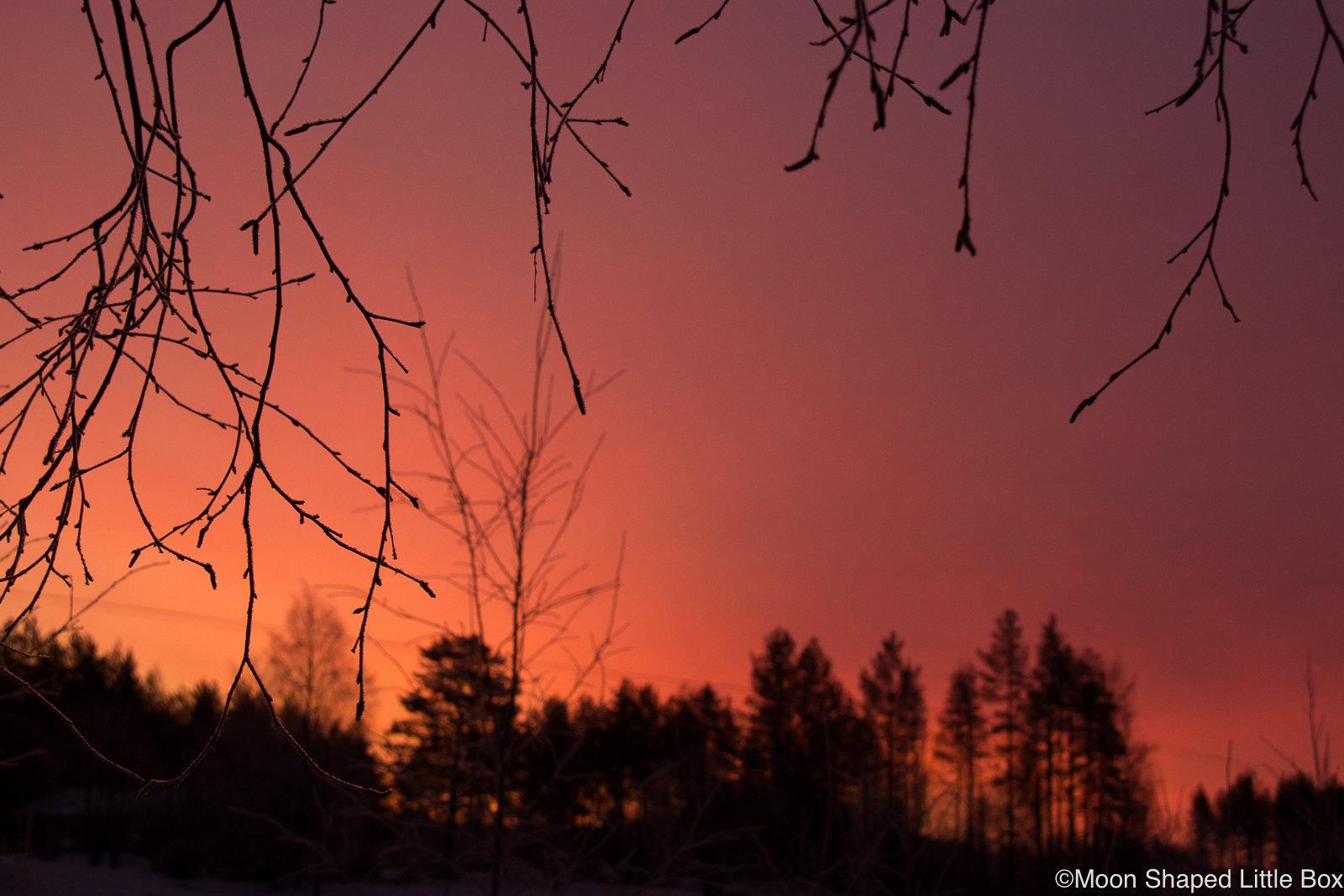 Sunrise-Finland-Polvijarvi