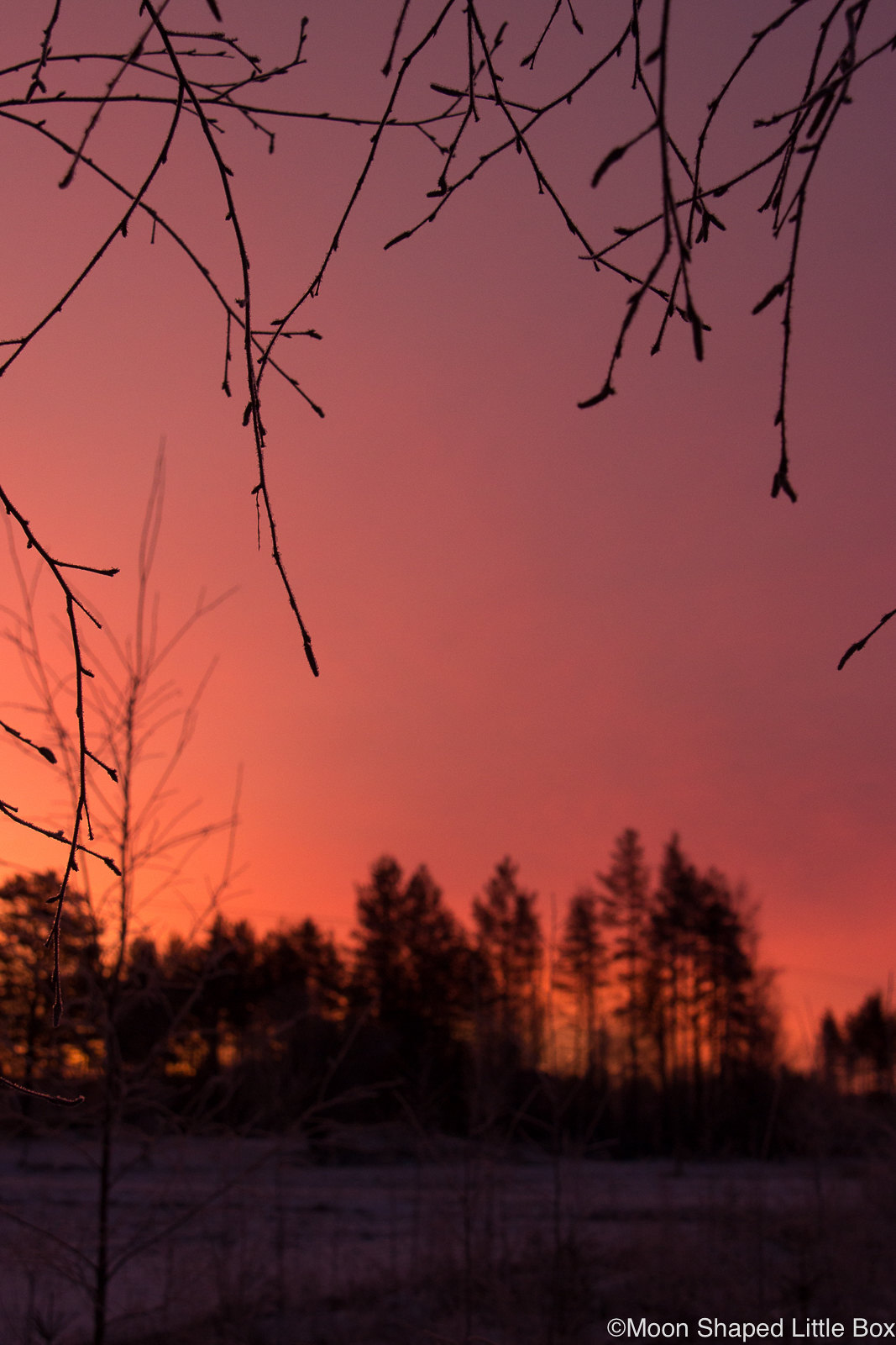 January-2020-Finland