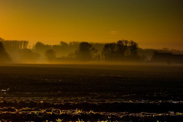 Misty dawn Kauwstraat-06725