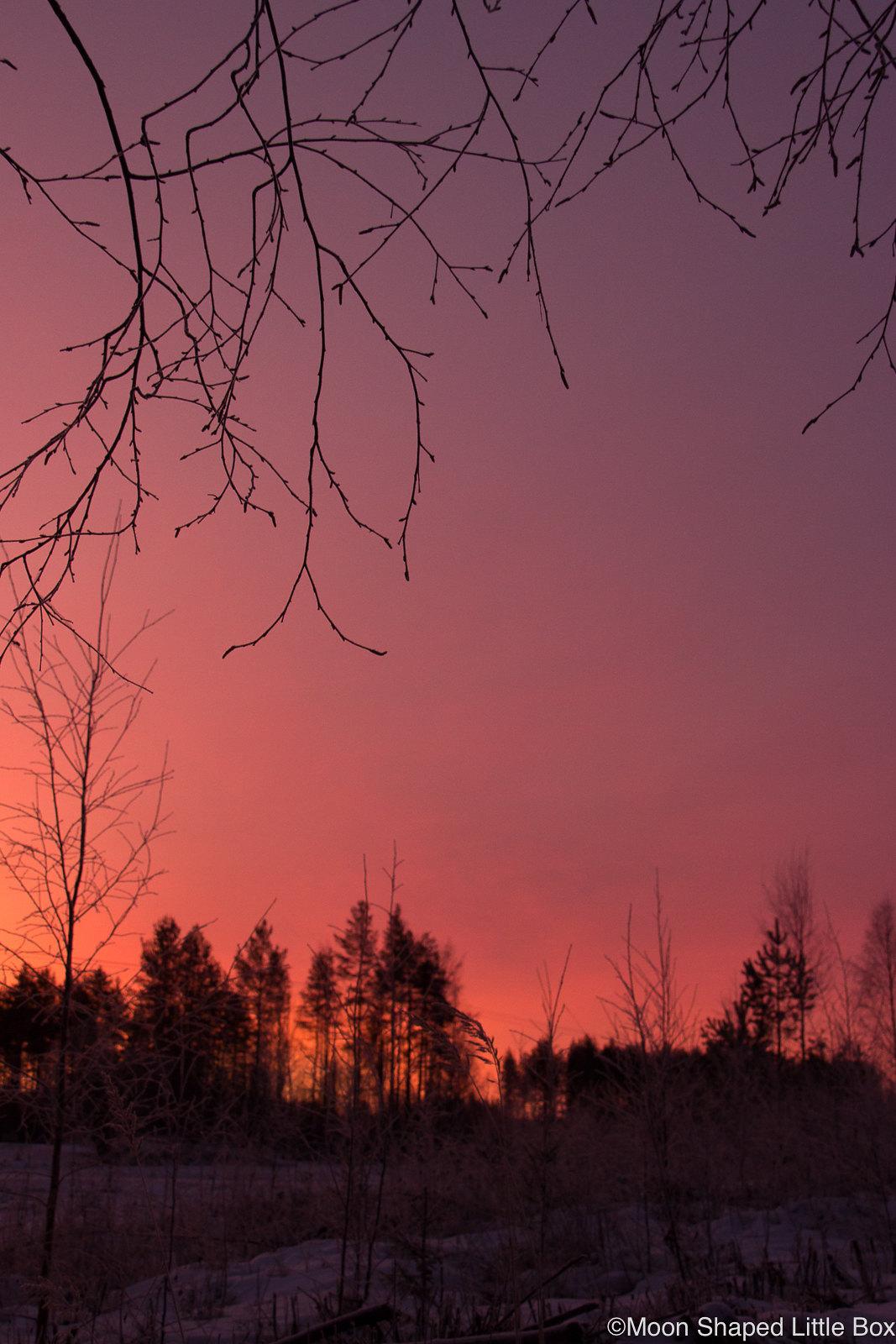 Auringonnousu-Polvijarvi-Sola-6