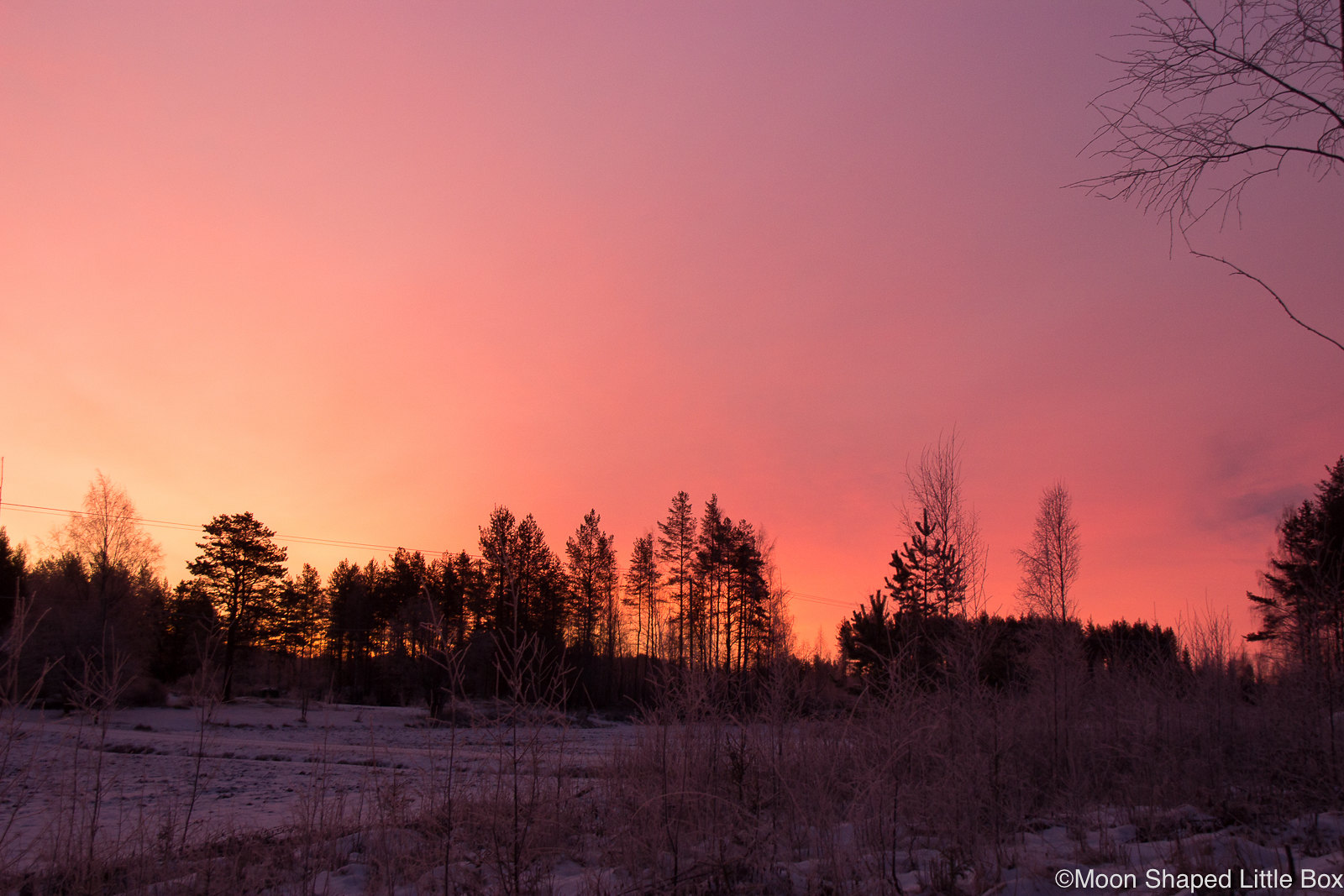 Sunrise-Polvijarvi-Sola-12
