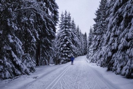 Vydatně nasněžilo, vyrazte na běžky!