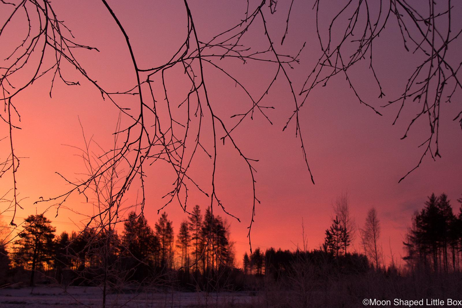 Pohjois-Karjala-auringonnousu-tammikuu-2020-2